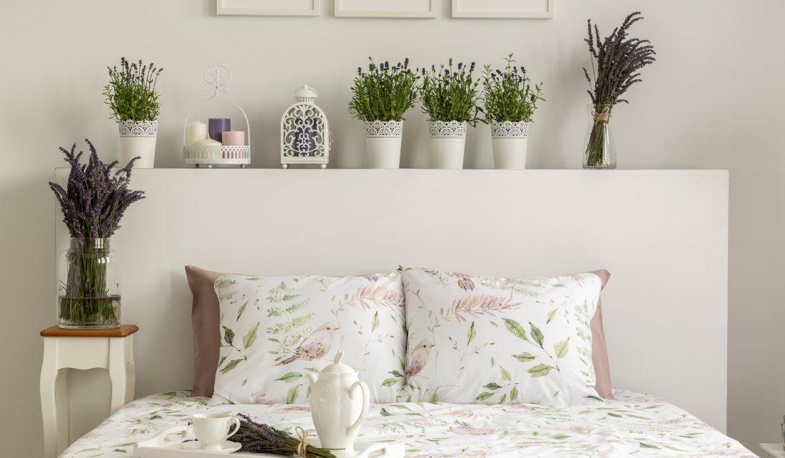 Jakie Kwiaty Do Sypialni Blog O Dekoracjach Slubnych